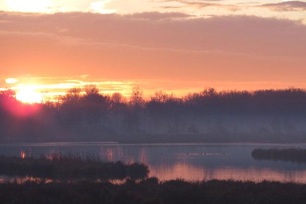 Lever de soleil sur l'étang Praillebard